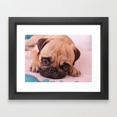 Pug Before Nap Framed Art Print
