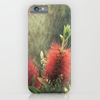 Bottle Brush Plant iPhone 6 Slim Case