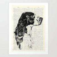 Vintage Springer Spaniel… Art Print