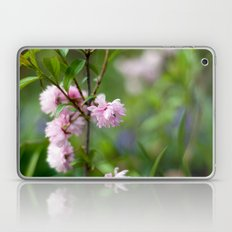 Flowering Almond Blossoms II Laptop & iPad Skin