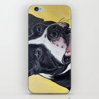 iPhone & iPod Skin featuring Pit Bull by WOOF Factory