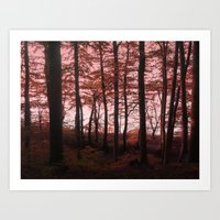Autumn in the Woods 4 Art Print