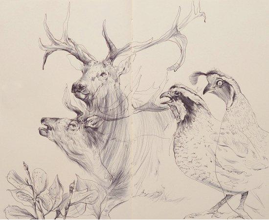 Elk & Quail Art Print