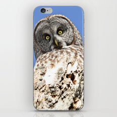 The world seen from above iPhone & iPod Skin