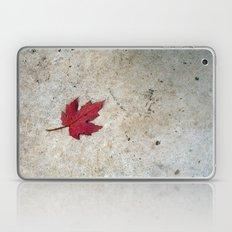 Red Leaf on Concrete Laptop & iPad Skin