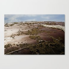 End of the Earth Canvas Print