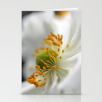 White Anemone Stationery Cards