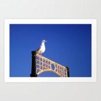 Brighton Bird Art Print