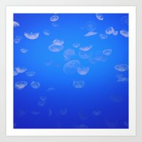jellyfish iii Art Print