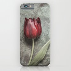 One Red Tulip iPhone 6 Slim Case