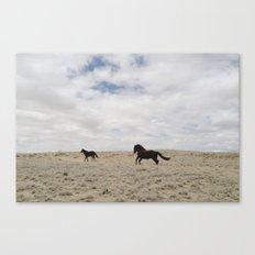 San Juan Horse Run Canvas Print