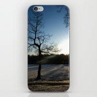 Snowy Sunset iPhone & iPod Skin