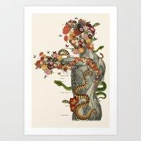 Serpens - Anatomical Col… Art Print
