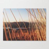 Fine Looking Weeds  Canvas Print
