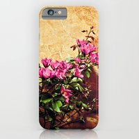 Pink flowers against weathered wall iPhone 6 Slim Case