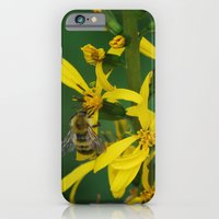 iPhone & iPod Case featuring garden bee by Cloud Rainbow