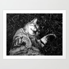 Dreaming of jamón Art Print