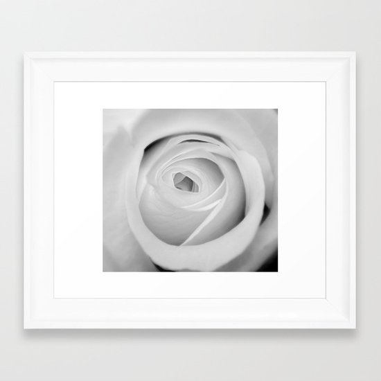 BWwhite Rose 2 Framed Art Print