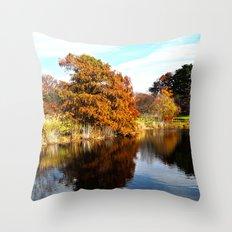 Arnold Arboretum Throw Pillow