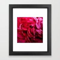 rosy petals Framed Art Print