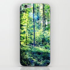 one summer day in the forest iPhone & iPod Skin
