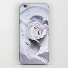 tears in the rosegarden iPhone & iPod Skin