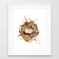 Bird's Nest Framed Art Print