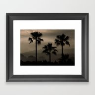 Framed Art Print featuring Palm Tree Silhouettes by Clare Bevan Photogra…
