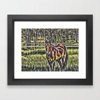 Horse In Paddock Framed Art Print