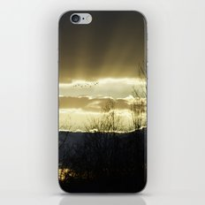 Journey On iPhone & iPod Skin