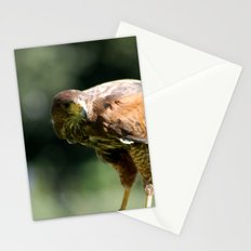 Keen Eye Stationery Cards