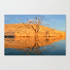 a late afternoon reflection. Canvas Print