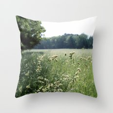 Come, Take a Walk with Me Throw Pillow
