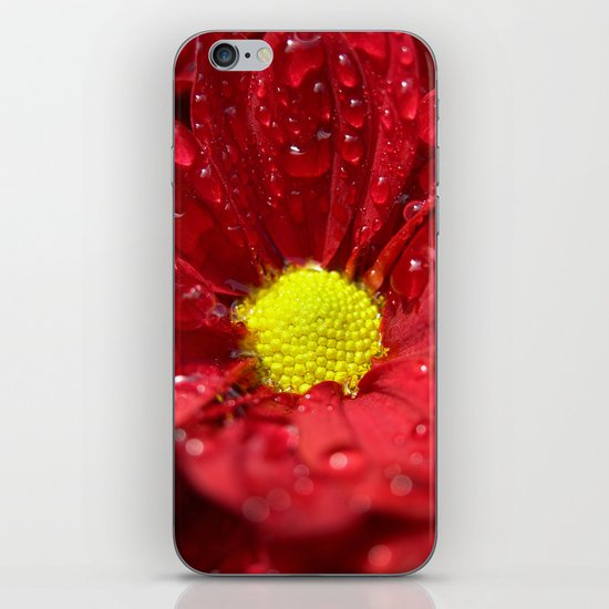 wet bloom I iPhone & iPod Skin