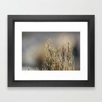 Tiny Plants Framed Art Print