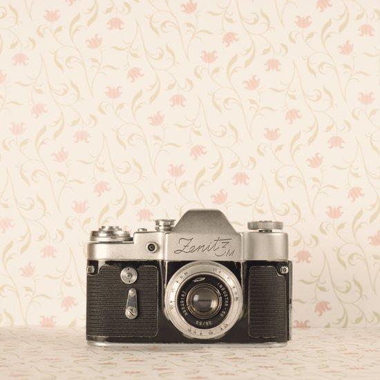 Zenit 3 Camera Film on Pink Flower Background Pearls on Book ( Vintage Still Life Photography)  Art Print