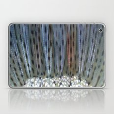 aurora mykiss Laptop & iPad Skin