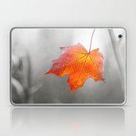 Velvet Autumn Laptop & iPad Skin