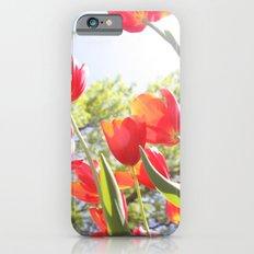 Tiptoe Through The Tulips Slim Case iPhone 6s