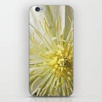 Bee's View iPhone & iPod Skin