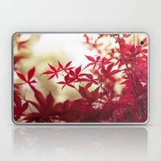 One September Afternoon Laptop & iPad Skin