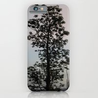 iPhone & iPod Case featuring Sunrise in Swaziland by Yield Media