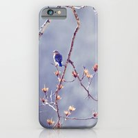 iPhone & iPod Case featuring A Bluebird for Isabelle by Tracey Tilson Photography