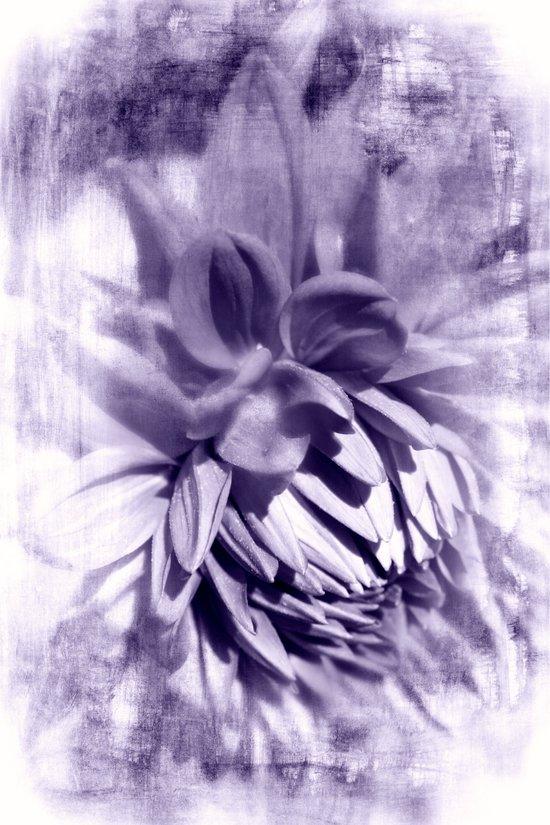 Tenderness Art Print