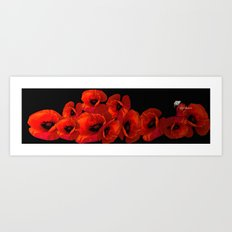 ELEVEN RED POPPIES Art Print