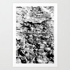 Dinosaur Skin (BW) Art Print