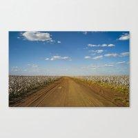 Cotton Fields In Brazil Canvas Print