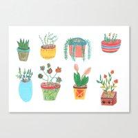 Plants. Canvas Print