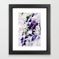 Vanilla Blue Framed Art Print