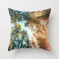 California Redwoods Sun-… Throw Pillow